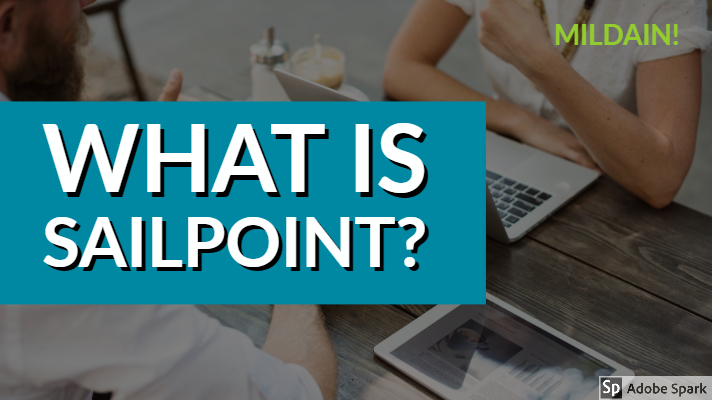 What Is SailPoint?
