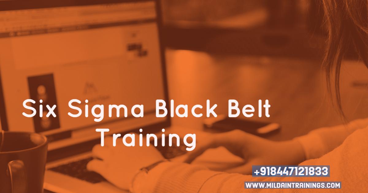 Lean Six Sigma Black Belt Certification Training India Us