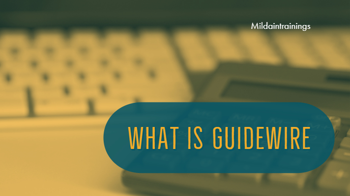 What is Guidewire ?