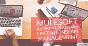 mildaintrainings-mulesoft