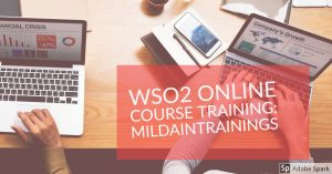 mildaintrainings-wso2